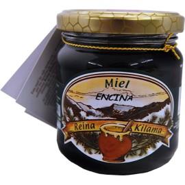 miel de encina 250 gramos atudespensa