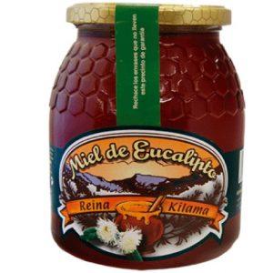 miel de eucalipto 1 kilo atudespensa